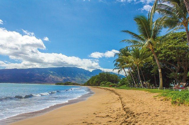 Quit your Job, Move to Hawaii Part 2 of 3