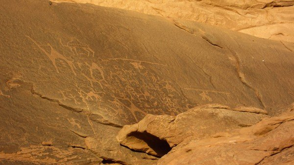 Petroglyphs at Wadi Rum