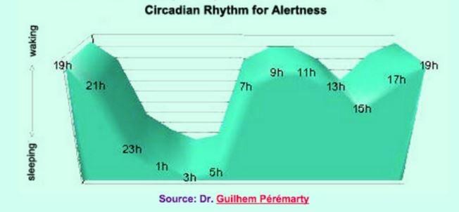 Circadian rhythms for alertness