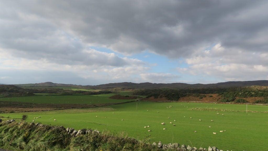 Farmland on Islay
